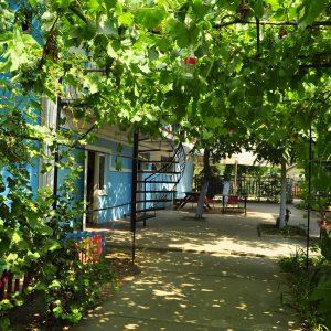 Фото вида сквозь виноградную арку в частном отеле в Одесской области