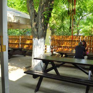 Фото летней площадки в мини-отеле Попугай в Курортном