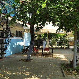 Фото деревьев во дворе в частном отеле на Черном море