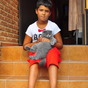 Фото мальчика с котиком на базе отдыха Лагуна в Коблево