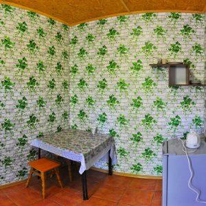 Фото кухни в номере люкс на базе в Приморском Приморье