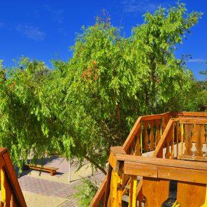 Фото вида с балкона базы отдыха в Затоке