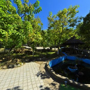 Фото фонтана с черепахами на отдыхе в Сергеевке